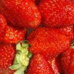 8 healthy kid snack ideas