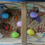 Birds Sensory Tub