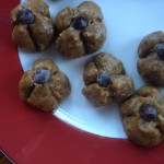Healthy veagn and raw peanut butter snack