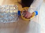 Bean Sorting-Montessori