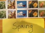 Spring Activities- Montessori-Style