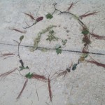 Art in Nature For Kids