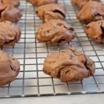 Molten chocolate chip cookies, gluten-free