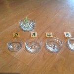 montessori: Learning Numbers and Math With Water Beads