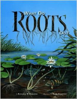 what do roots do