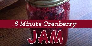 5-minute-cranberry-refrigerator-jam
