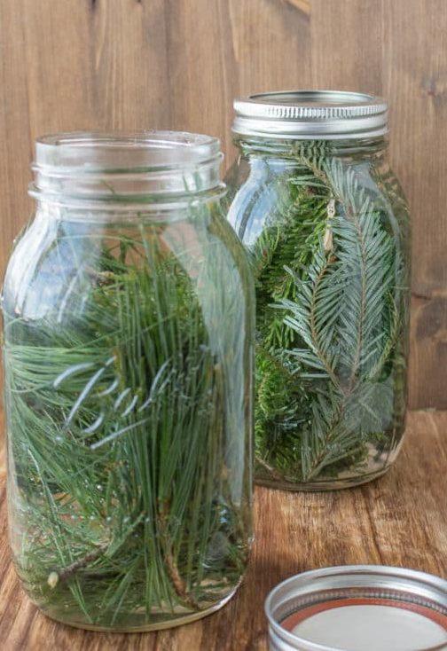 Homemade Pine Vinegar | Healthy Mama Info